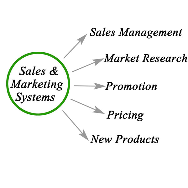 Sales and Marketing Systems graph pointing to examples - Sales Management, Market Research, Promotion, Pricing, New products