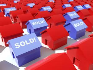real_estate_calgary_market_mentoring_education